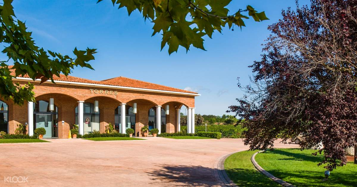 Catalan Wine and Cava Tasting Day Tour from Barcelona