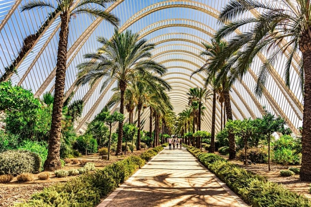 The Umbracle at City of Arts and Sciences